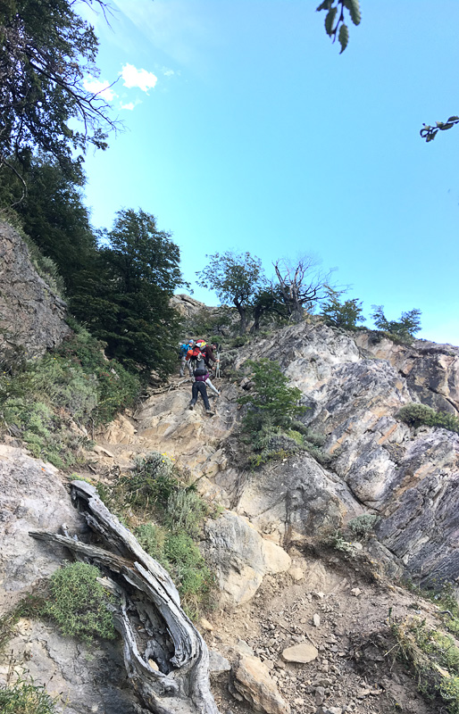 Ljudje, ki se spuščajo po gozdni poti na Huemul hike