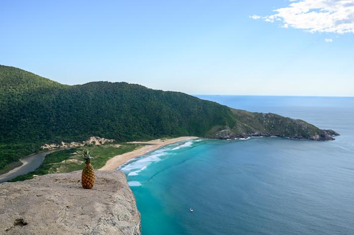 ananas na skali nad morjem