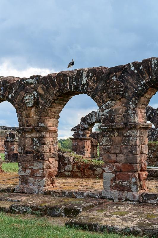 Ptiček (lisastna priba) nad obokom ruševin jezuitskih misijonov v Paragvaju