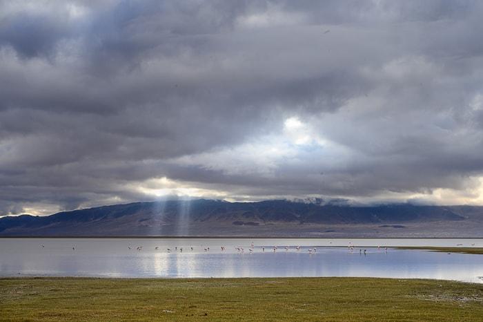 laguna Blanca, Argentina