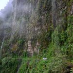 Yungas road ali death road