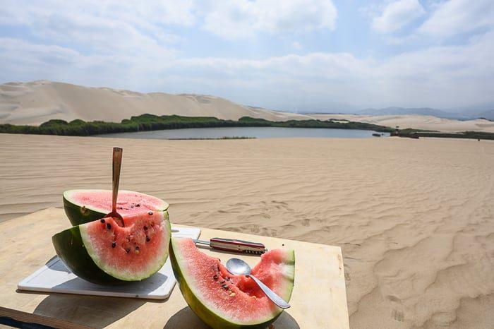 lubenica v puščavi