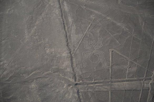 nazca lines pajek narisan v tla