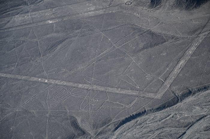 nazca lines črte