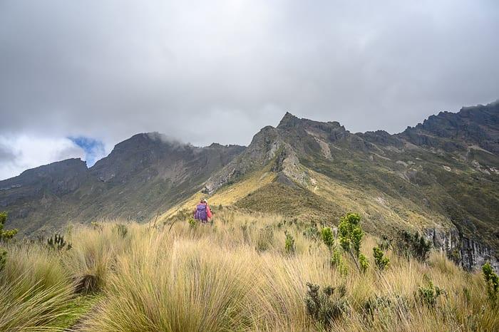 ženska hodi skozi visoko travo v nacionalnem parku cotopaxi