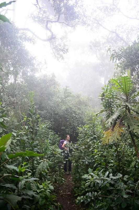 ženska pohodnica v Valle de Cocora