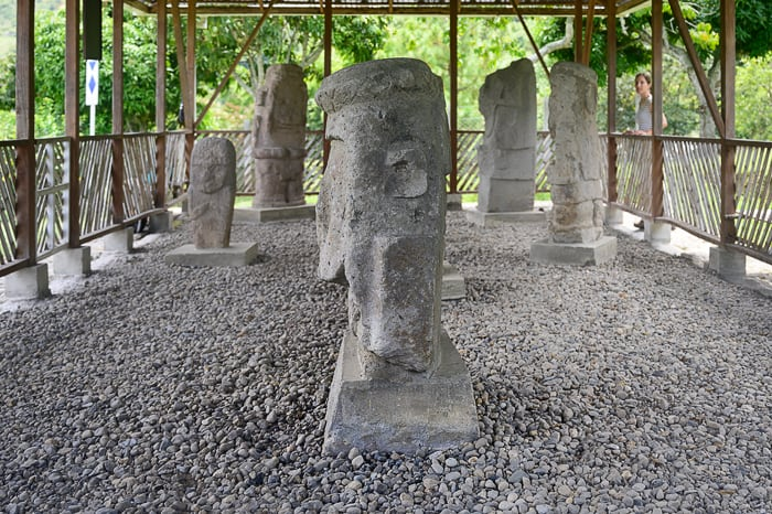 kipi šamanov