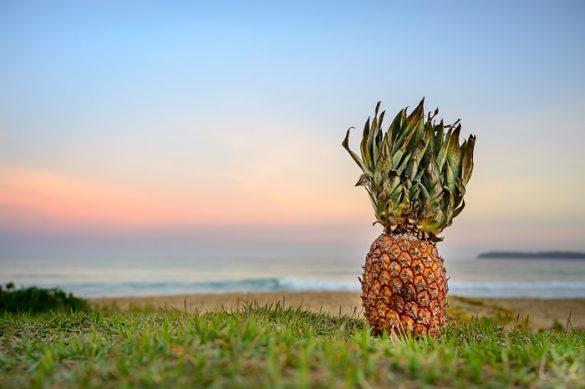 ananas na plaži Ubatuba