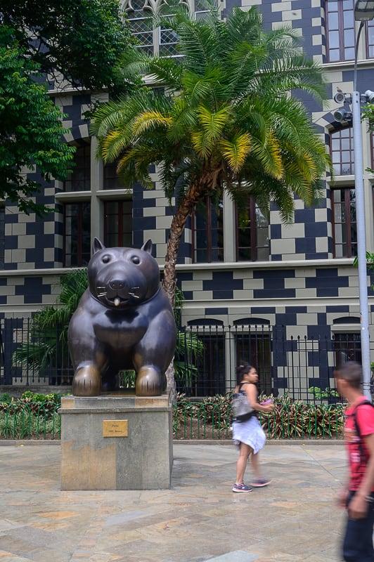 kip mačke, plaza botero, medellin