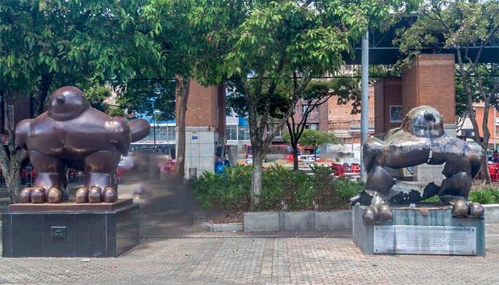 Pajaro del paz, Medellin