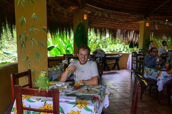 papiga na stolu, moški pri kosilu