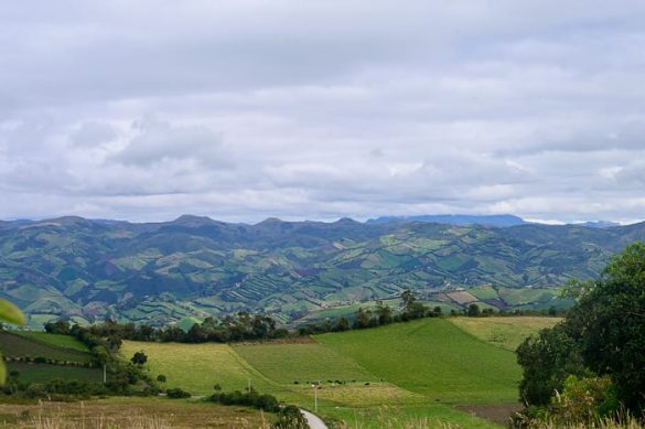 griči v Ekvadorju