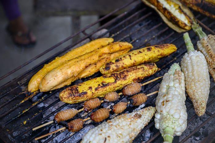 pečena koruza, ekvador
