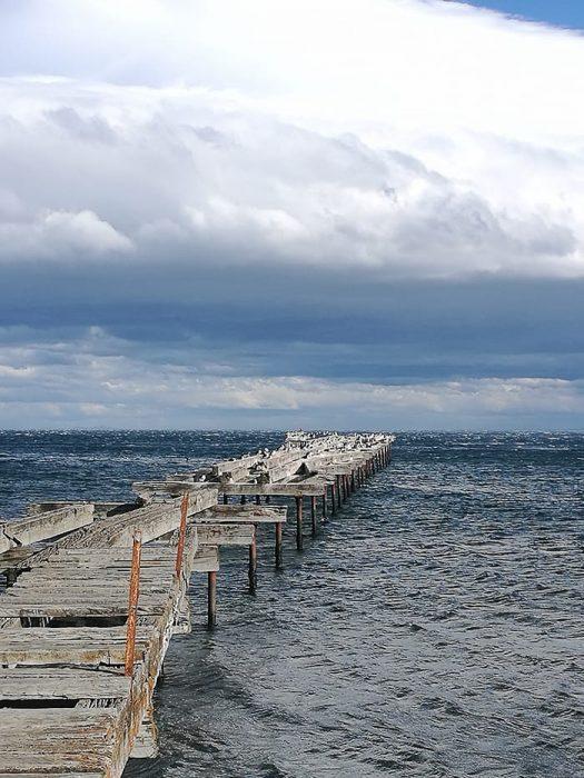 pomol s kormorani v Punta Arenas