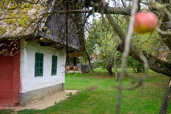 Muzej na prostem Filovci