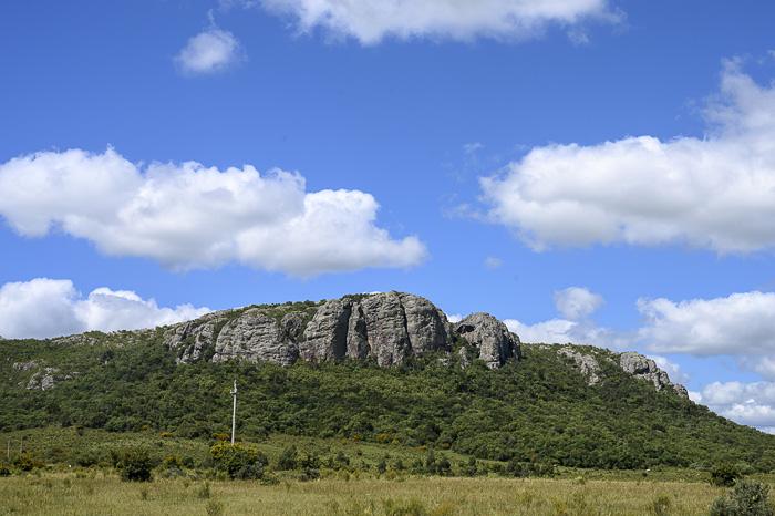 hrib, pokrajina urugvaja