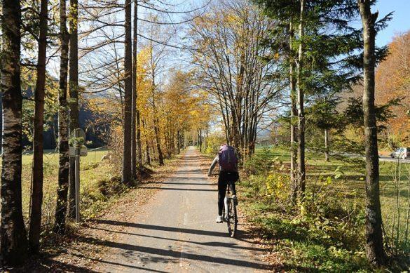 ženska na kolesu po jesenski pokrajini