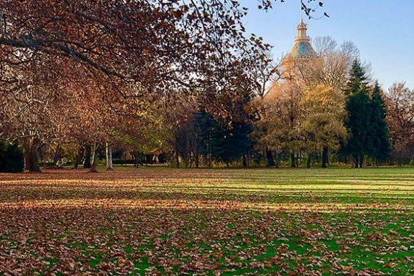 travnik z jesenskim listjem
