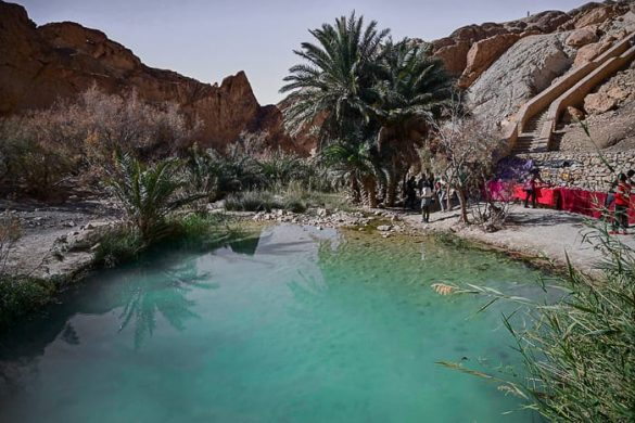 oaza Chebika