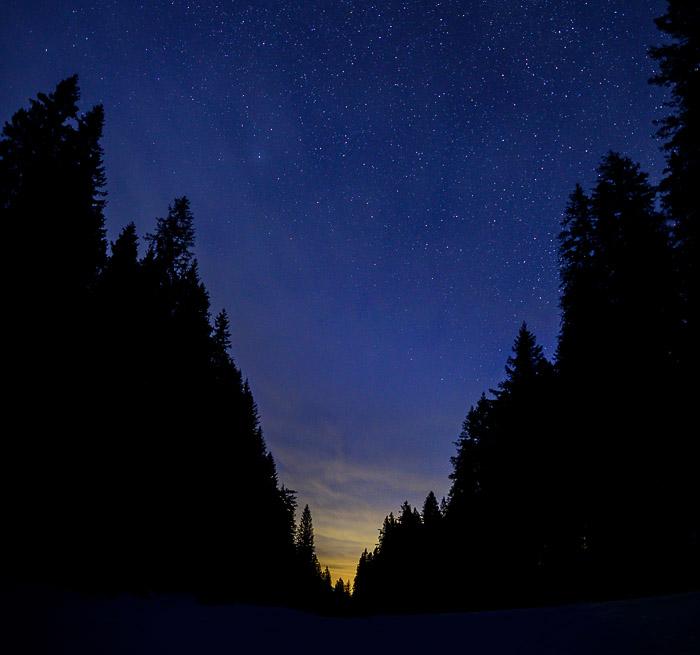zvezdnato nebo nad gozdom. Pokljuka