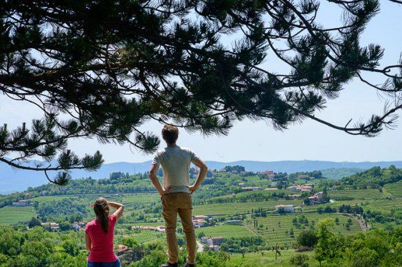 moški in ženska sedita pod drevesom in gledata v daljavo