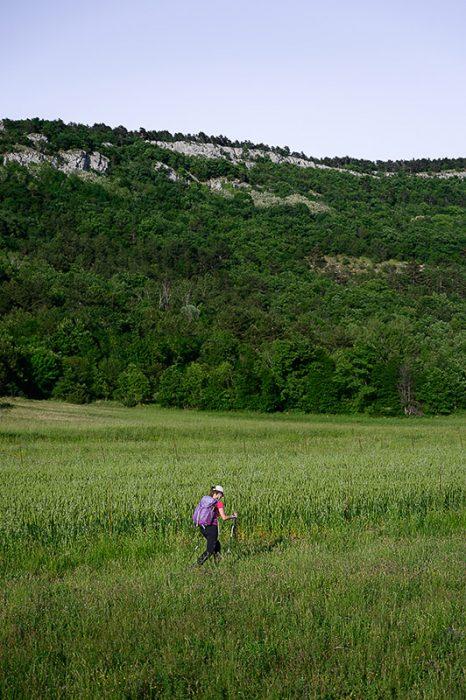 ženska hodi skozi travnike