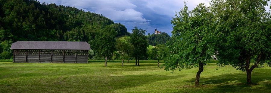 lesen kozolec, Poljanska dolina