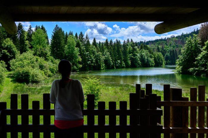 ženska sloni na ograji in gleda na jezero - Reško jezero