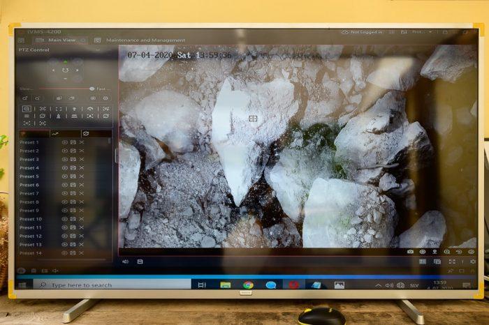 črna človeška ribica na ekranu