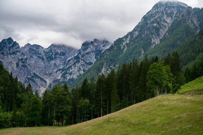 travnik, zadaj gozd, še boj zadaj pa gore v oblakih