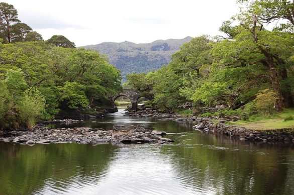 jezero in kamniti most v ozadju