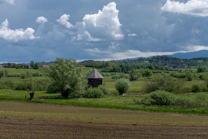 opazovalnica sredi travnika. park Jovsi
