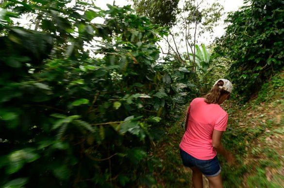 ženska hodi skozi deževni gozd