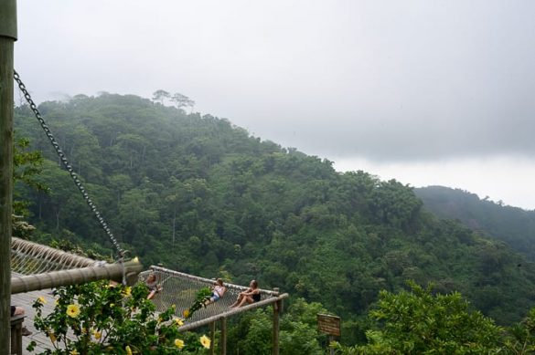 mrežasti ležalniki nad tropskim gozdom, Casa Elemento