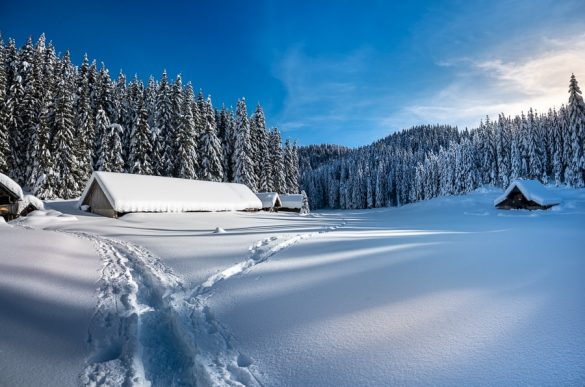 zimska pokrajina, zimska idila Pokljuka