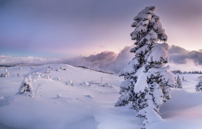 zasnežena Velika planina
