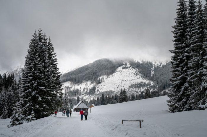 zimska idila, dolina Chochołowska