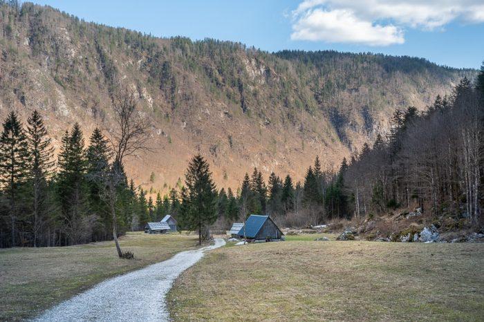 dolina voje: makadamska cesta mimo planšarskih koč v dolini Voje