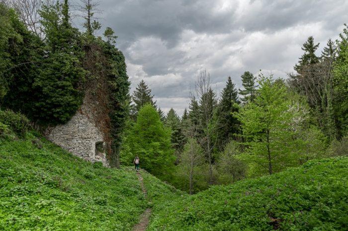 zaraščen grad Hmeljnik