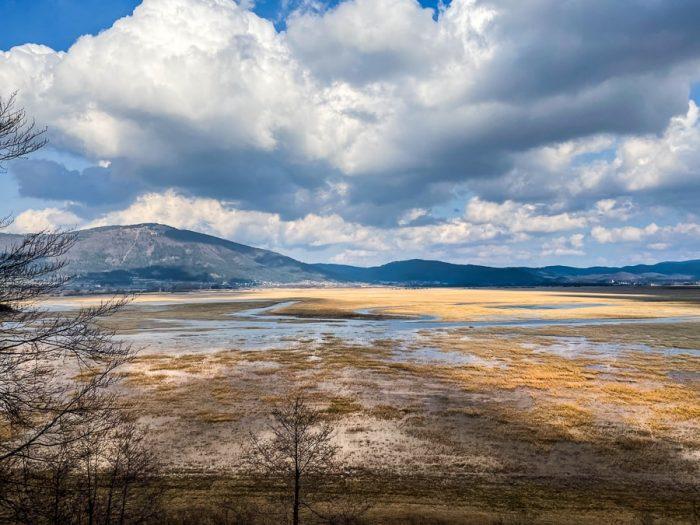 cerkniško jezero: trstičje in vmes voda, v ozadju hrib Slivnica