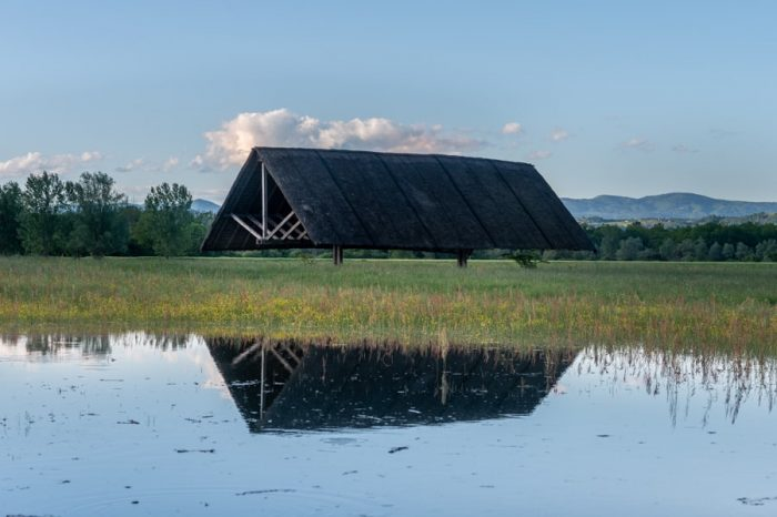 kozolec, Oton Jugovec na poplavljenem polju