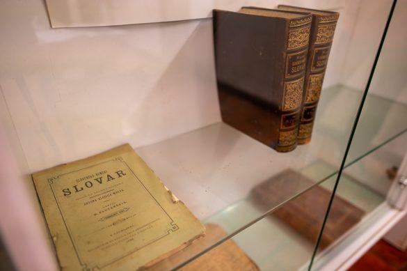 starinska knjiga, slovensko-nemški slovar, Maks Pleteršnik