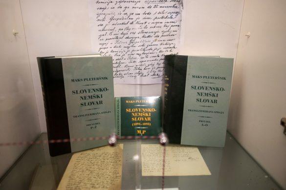 slovar slovensko-nemškega jezika