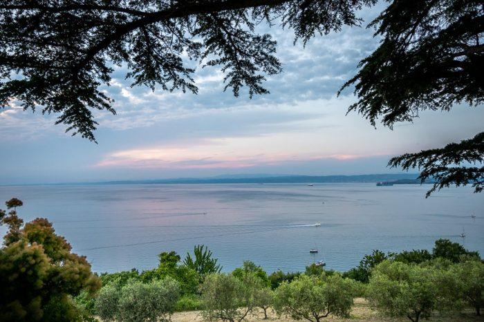 sončni zahod iz Izole. Pogled na Italijo in nasad oljk