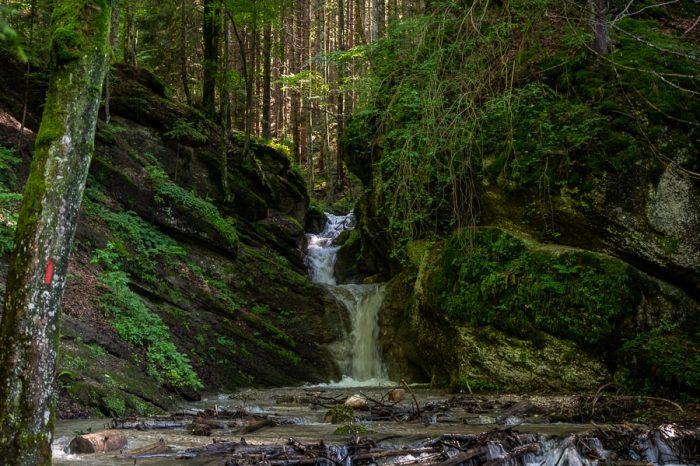 manjši slap na potoku v gozdu. Romunija
