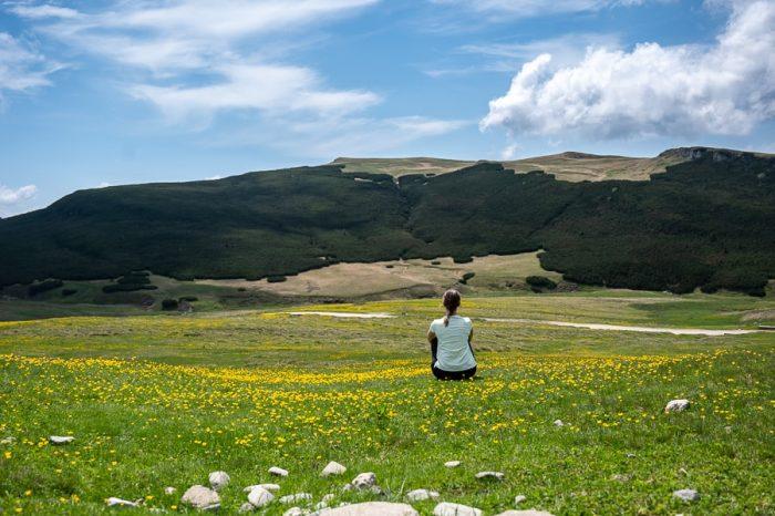 ženska sedi na travniku med rumenimi rožicami. Bucegi, Romunija